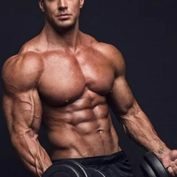 The Basics of Muscle Building