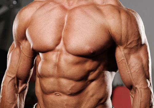 Uses of Tribulus Terrestris In Bodybuilding Supplements